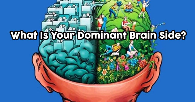 What Is Your Dominant Brain Side?