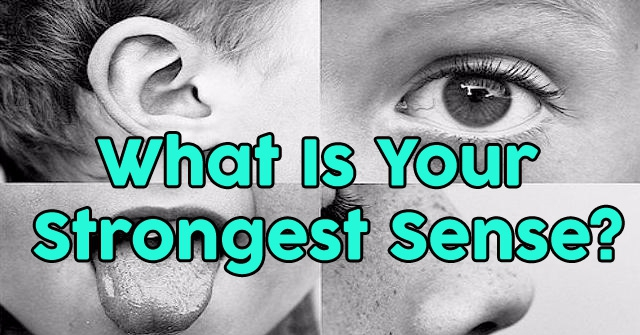 What Is Your Strongest Sense?