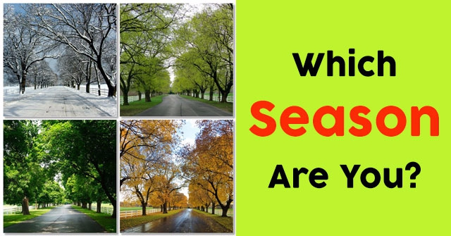 Which Season Are You?