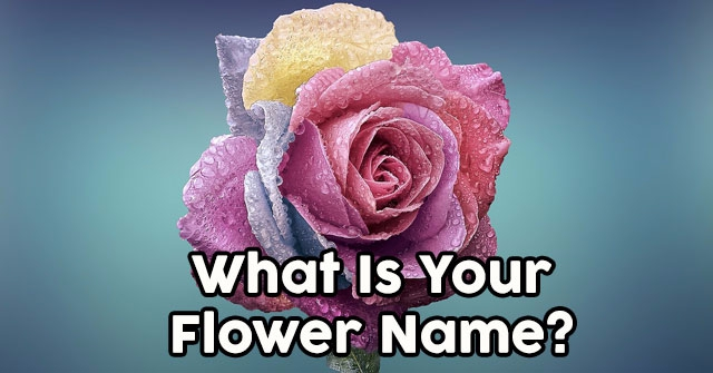 What Is Your Flower Name?