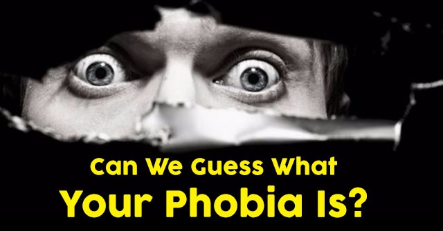 Can We Guess What Your Phobia Is?