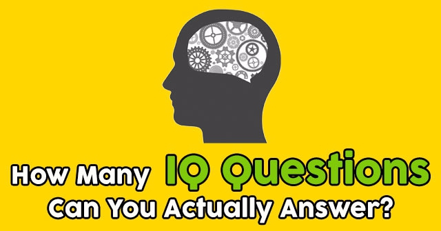How Many IQ Questions Can You Actually Answer?