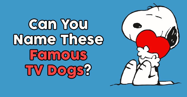 Can You Name These Famous TV Dogs?