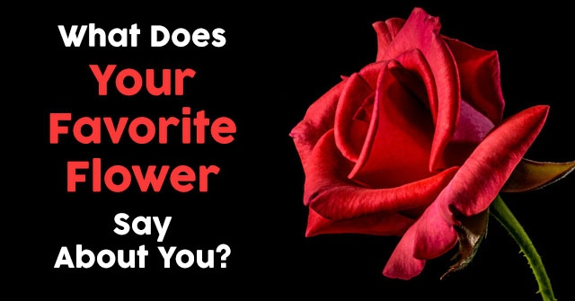 What Does Your Favorite Flower Say About You?