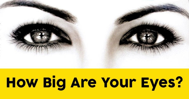 How Big Are Your Eyes?