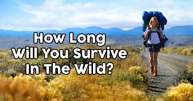 how long will you survive in the wild quizdoo