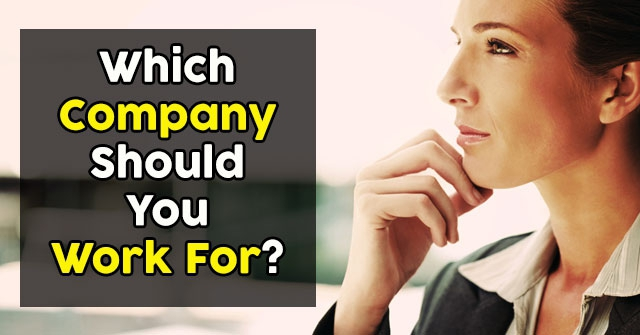 Which Company Should You Work For?