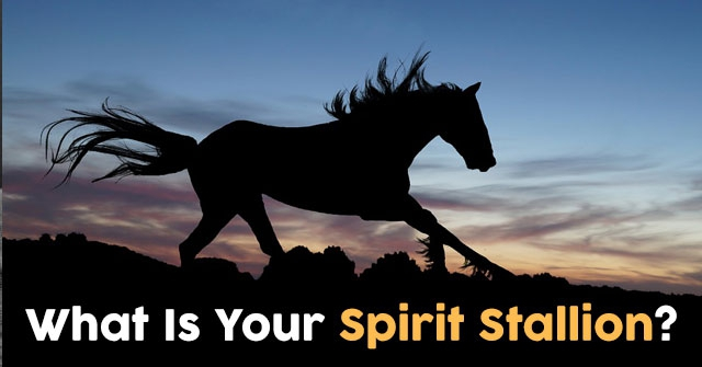 What Is Your Spirit Stallion?