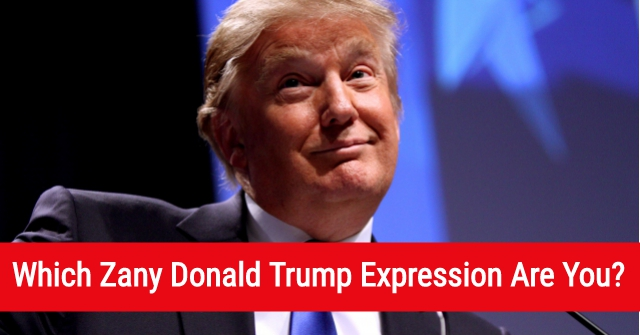 Which Zany Donald Trump Expression Are You?