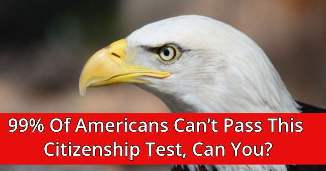 99% Of Americans Can't Pass This Citizenship Test, Can You?