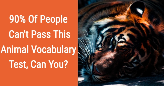 90% Of People Can't Pass This Animal Vocabulary Test, Can You?