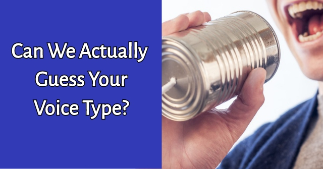 Can We Actually Guess Your Voice Type?
