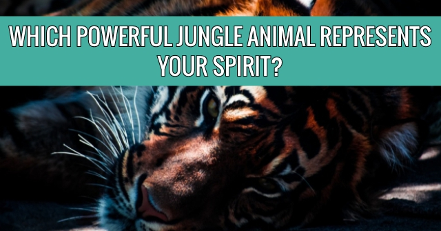 Which Powerful Jungle Animal Represents Your Spirit?