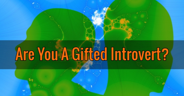 Are You A Gifted Introvert?