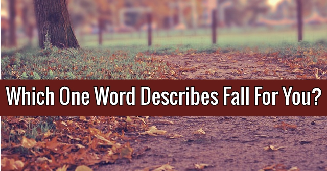 Which One Word Describes Fall For You?