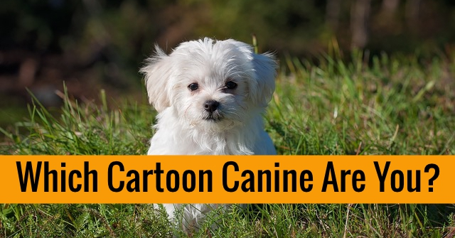 Which Cartoon Canine Are You?