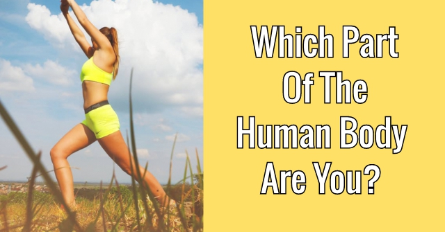 Which Part Of The Human Body Are You?