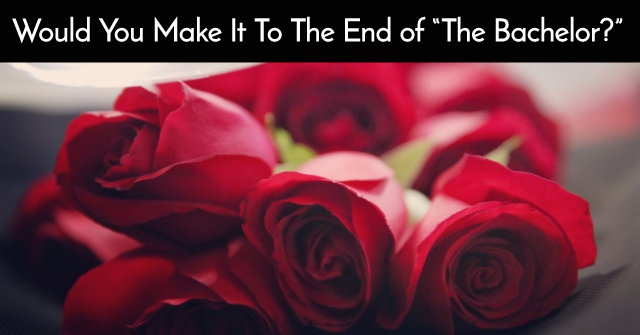 """Would You Make It To The End of """"The Bachelor?"""""""