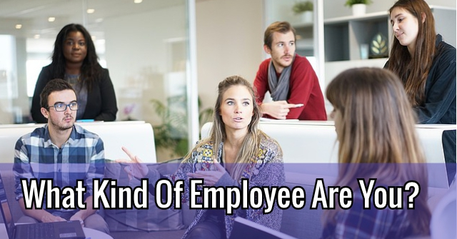 What Kind Of Employee Are You?