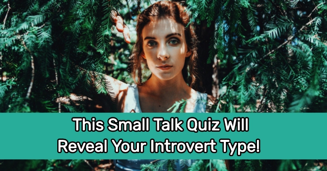 This Small Talk Quiz Will Reveal Your Introvert Type!