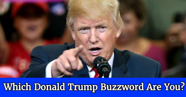 Which Donald Trump Buzzword Are You?
