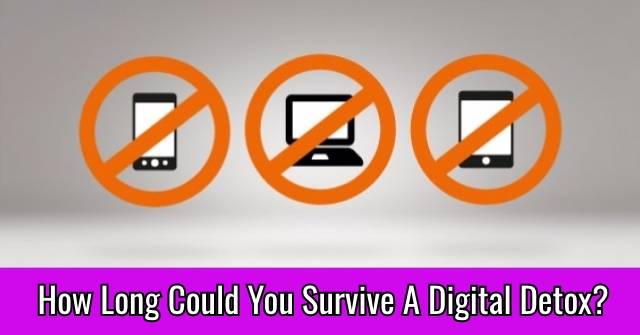 How Long Could You Survive A Digital Detox?