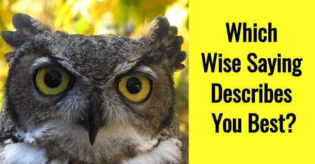 Which Wise Saying Describes You Best?