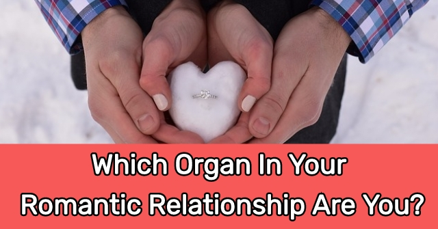 Which Organ In Your Romantic Relationship Are You?