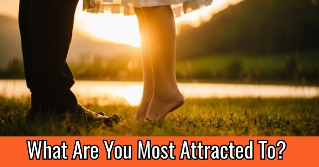 What Are You Most Attracted To?