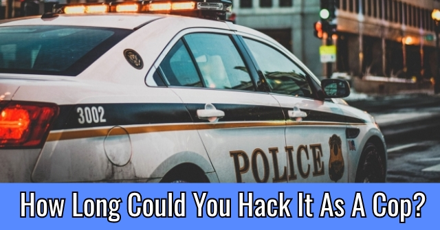 How Long Could You Hack It As A Cop?