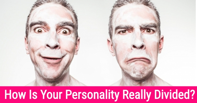 How Is Your Personality Really Divided?