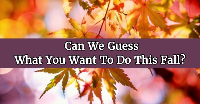 Can We Guess What You Want To Do This Fall?