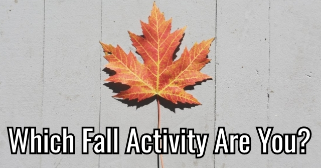 Which Fall Activity Are You?