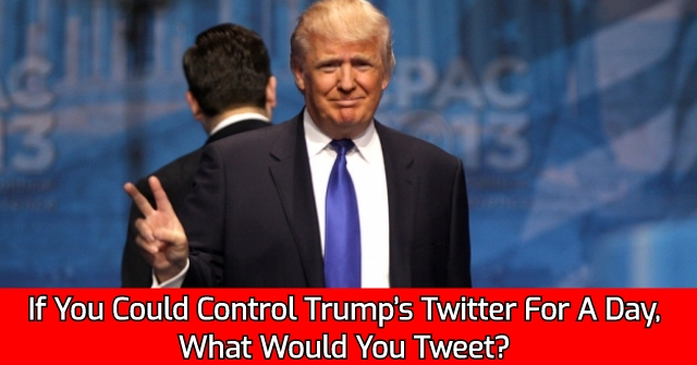 If You Could Control Trump's Twitter For A Day, What Would You Tweet?