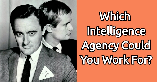Which Intelligence Agency Could You Work For?