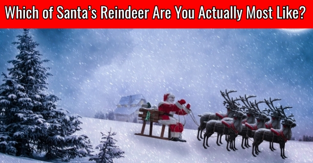 Which of Santa's Reindeer Are You Actually Most Like?