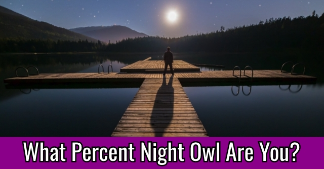 What Percent Night Owl Are You?
