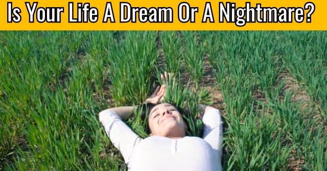 Is Your Life A Dream Or A Nightmare?