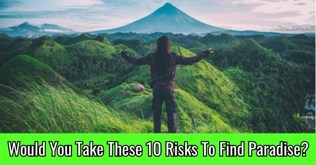 Would You Take These 10 Risks To Find Paradise?