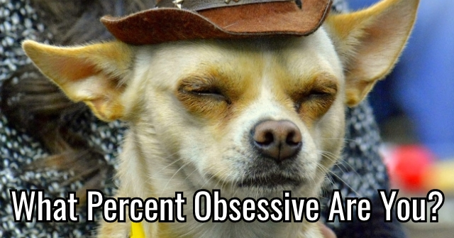 What Percent Obsessive Are You?