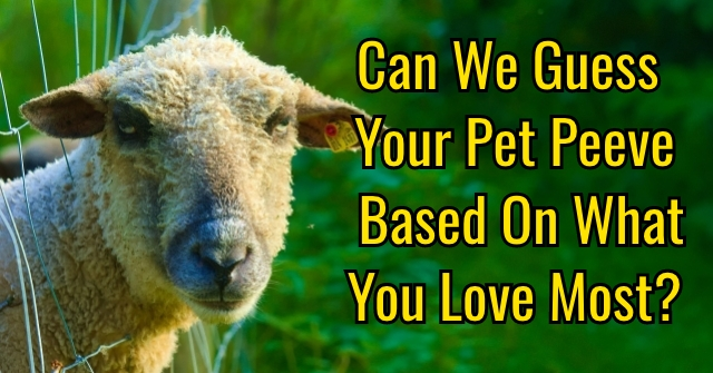 Can We Guess Your Pet Peeve Based On What You Love Most?