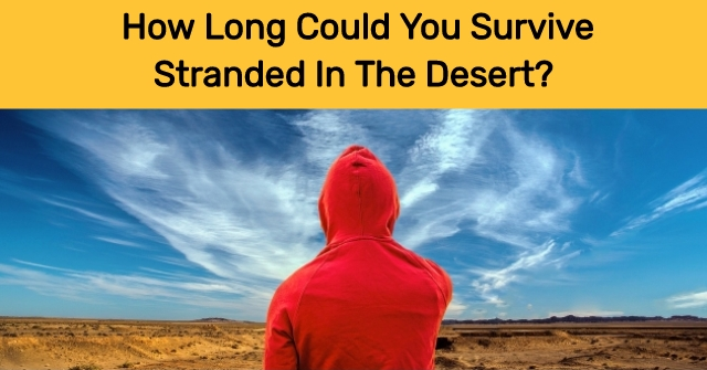 How Long Could You Survive Stranded in the Desert?