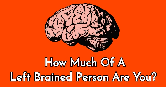 How Much Of A Left Brained Person Are You?