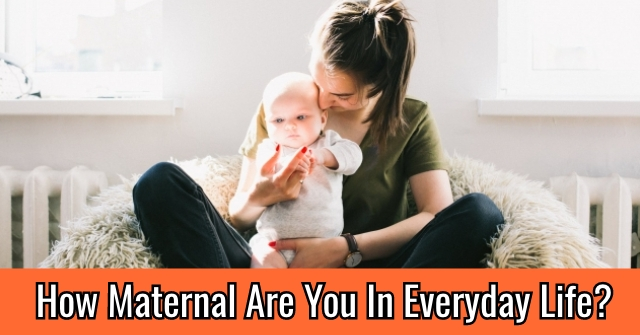 How Maternal Are You In Everyday Life?