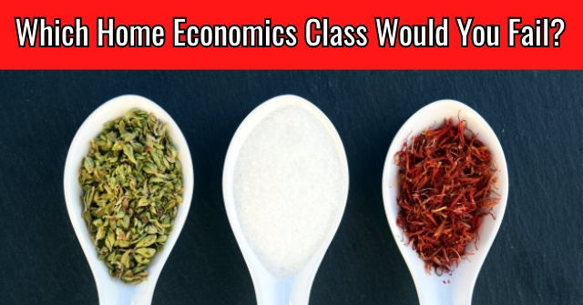 Which Home Economics Class Would You Fail?