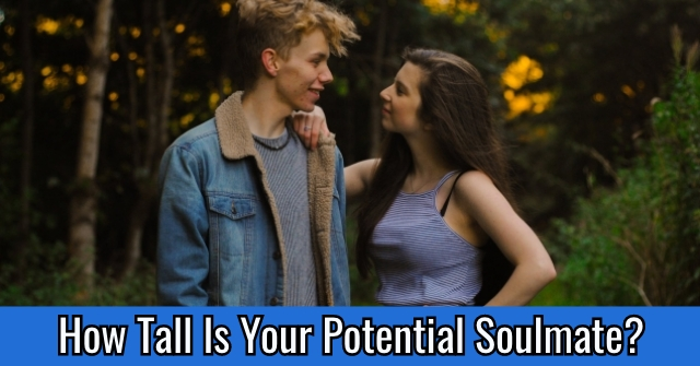 How Tall Is Your Potential Soulmate?