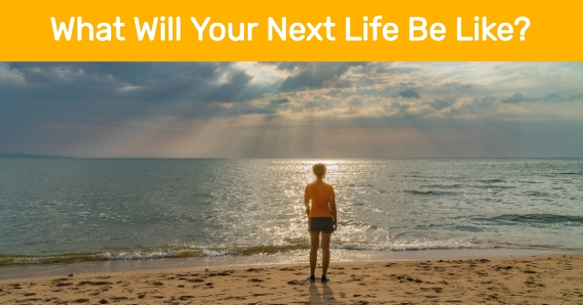 What Will Your Next Life Be Like?