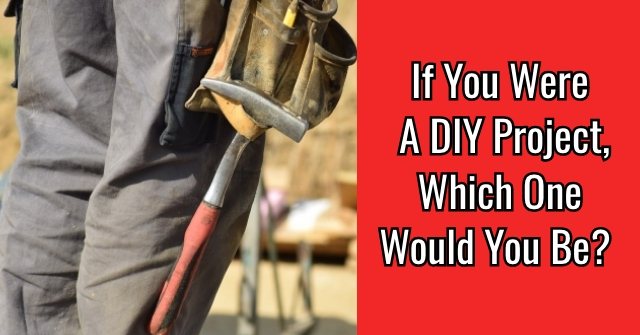 If You Were A DIY Project, Which One Would You Be?