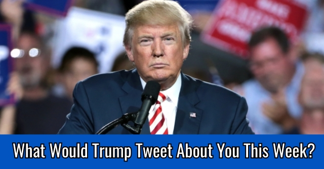 What Would Trump Tweet About You This Week?