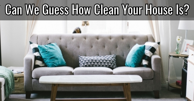 Can We Guess How Clean Your House Is?